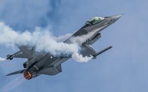 Picture fighter, F-16, Fighting Falcon, multipurpose