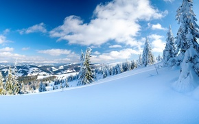 Picture winter, clouds, snow, trees, nature, landscapes, the slopes