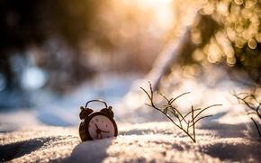Picture winter, grass, snow, watch, alarm clock, bokeh