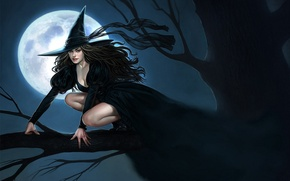 Picture night, tree, branch, hat, tape, Halloween, witch, the full moon, Witch