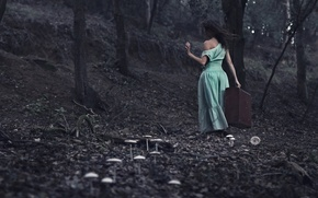 Picture forest, girl, suitcase