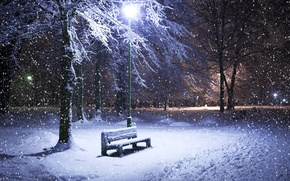 Wallpaper shop, Park, night, snow, lantern, winter, trees