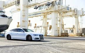 Picture Audi, white, wheels