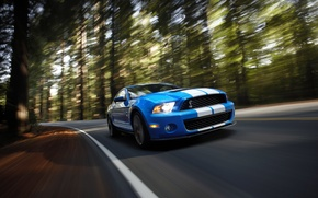 Wallpaper Shelby, GT500, speed, muscle car