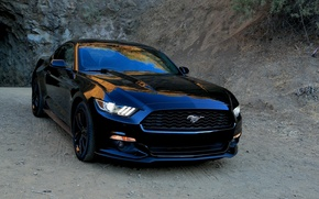 Picture Mustang, Ford, 2015