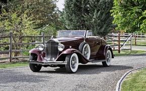 Picture Roadster, Roadster, 1932, Packard, Packard