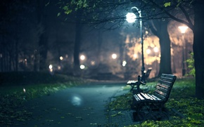 Picture bench, tree, lights, benches, night, twilight, track, lantern, autumn, autumn wallpapers, hd wallpapers, autumn Wallpaper, …