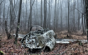 Picture Fog, Autumn, Forest, Disaster, military, Autumn, Military, The plane, Fog, Forest, Aircraft, catastrophe
