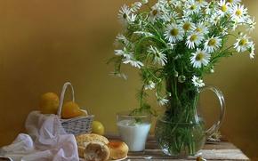 Picture flowers, glass, chamomile, milk, pitcher, still life, basket, plum, bun