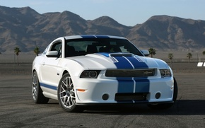 Wallpaper Shelby, Ford, 350