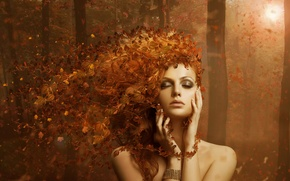 Picture forest, leaves, girl autumn, AUTUMN LEAVES