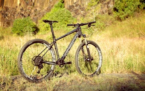 Picture summer, nature, sport, bicycle, bike, sports, mountain bike