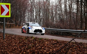 Picture car, forest, road, rally, citroen, spring