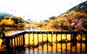 Picture autumn, glass, drops, rain