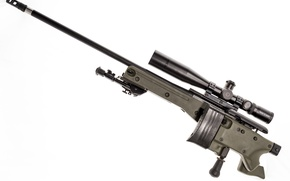 Picture weapons, optics, rifle, sniper