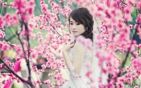 Picture girl, beauty, spring, garden