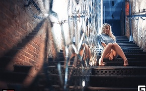 Picture girl, photographer, ladder, girl, photography, photographer, Eugene APIN, Evgeniy Apin