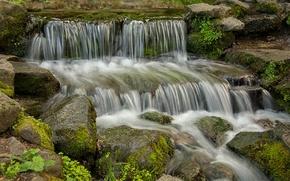 Picture forest, stream, stones, waterfall, moss, USA, Yosemite