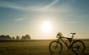 Picture nature, bike, morning, halt, mountain bike