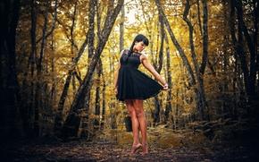 Wallpaper FOREST, DRESS, BRUNETTE, TREES, BLACK, AUTUMN, SUNDRESS