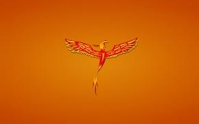 Wallpaper minimalism, Phoenix, bird, fenix, phoenix, red, reddish background