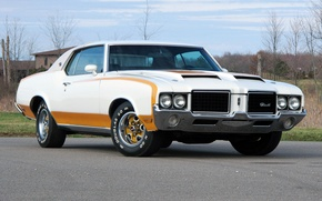 Picture muscle car, Coupe, the front, 1972, Hardtop, Pace Car, Oldsmobile, Cutlass, the Oldsmobile, Supreme, Hurst, …