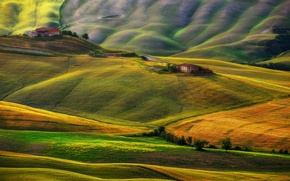 Picture hills, field, home, Italy, Tuscany, barns
