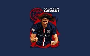 Picture Soccer, PSG, Edinson Cavani, Paris Saint-Germain
