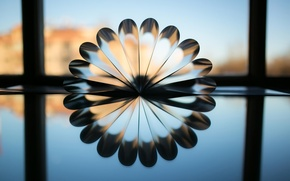Picture line, reflection, fan, circumference, Reflection