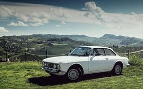 Picture White, Retro, Alfa Romeo, Classic, Alfa Romeo, Giulia