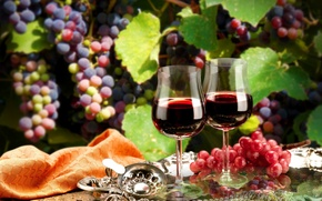 Picture leaves, branches, wine, red, glasses, grapes, tray