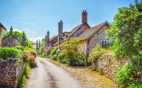 Picture the sky, trees, street, England, home, bossington
