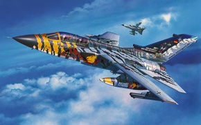 "Picture art, painting, jet, Tornado ECR ""Tigermeet 2011"""