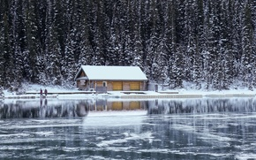 Picture forest, house, river, LITTLE HOUSE