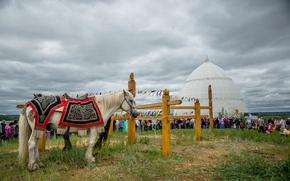 Picture summer, Yakutia, Ysyakh, Yakutsk