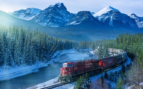 Picture forest, mountains, train, morning, Canada, railroad, Albert