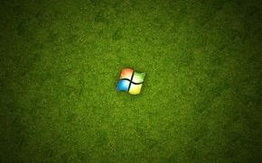 Wallpaper Windows, grass, green