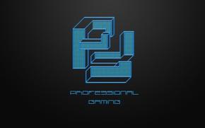 Picture wallpaper, logo, game, minimalism, professional, gaming, dota2, pfgaming, pfg, steamo