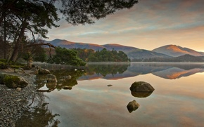 Picture forest, lake, reflection, hills, morning