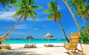 Picture sand, sea, beach, palm trees, stay, umbrellas
