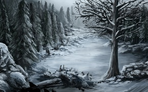 Wallpaper cold, snow, nature, art, winter, tree, forest, stones
