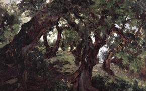Picture Oak Grove, Carlos de Haes, landscape, nature