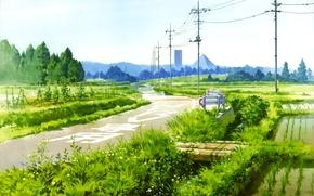 Picture road, the sky, grass, stream, posts, wire, Japan, pyramid, the bridge, Neon Genesis Evangelion, rice …