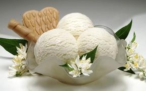 Picture flowers, cookies, ice cream, dessert, sweet, sweet, Jasmine, dessert, ice cream
