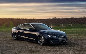 Picture Audi, wheels, stance, frontside