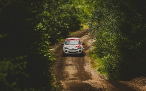 Picture The sun, Road, Trees, Forest, Dirt, Day, Track, Foliage, Rally, Lada Kalina 2, VAZ, Lada …