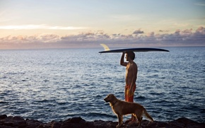 Picture SEA, HORIZON, The OCEAN, The SKY, CLOUDS, SURFER, COAST, SHORE, SURFING, SPORT, DAL, DOG