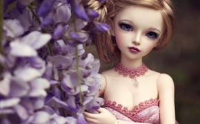Picture look, flowers, toy, doll