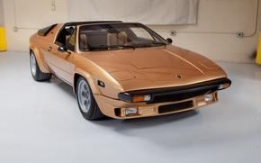 Picture Lamborghini, Silhouette, P300, in the garage