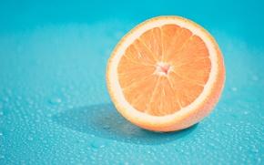 Wallpaper citrus, drops, fruit, orange, macro